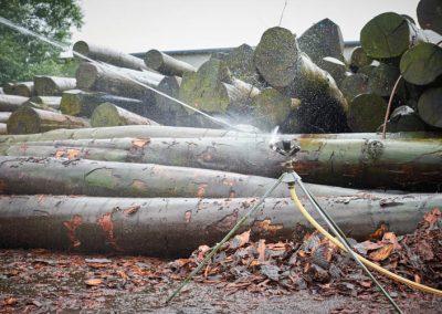 Holzstämme mit Sprenkelanlage