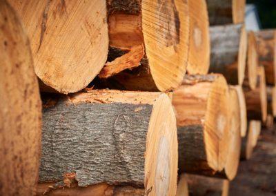 Holzstämme mit Rinde