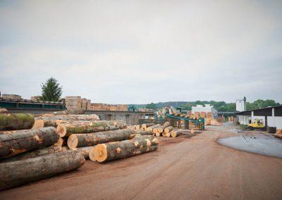 Lagerung von Holzstämmen