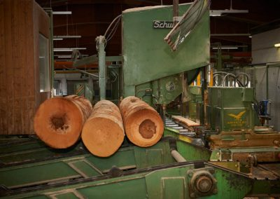 Holzbearbeitungsmaschine mit Holzstämmen